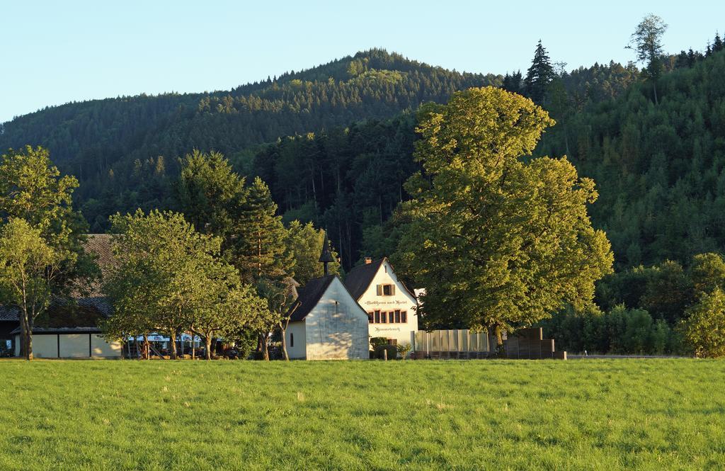 Blick über die Wiese auf das Hofgut Himmelreich, von grünen Laubbäumen umgeben.