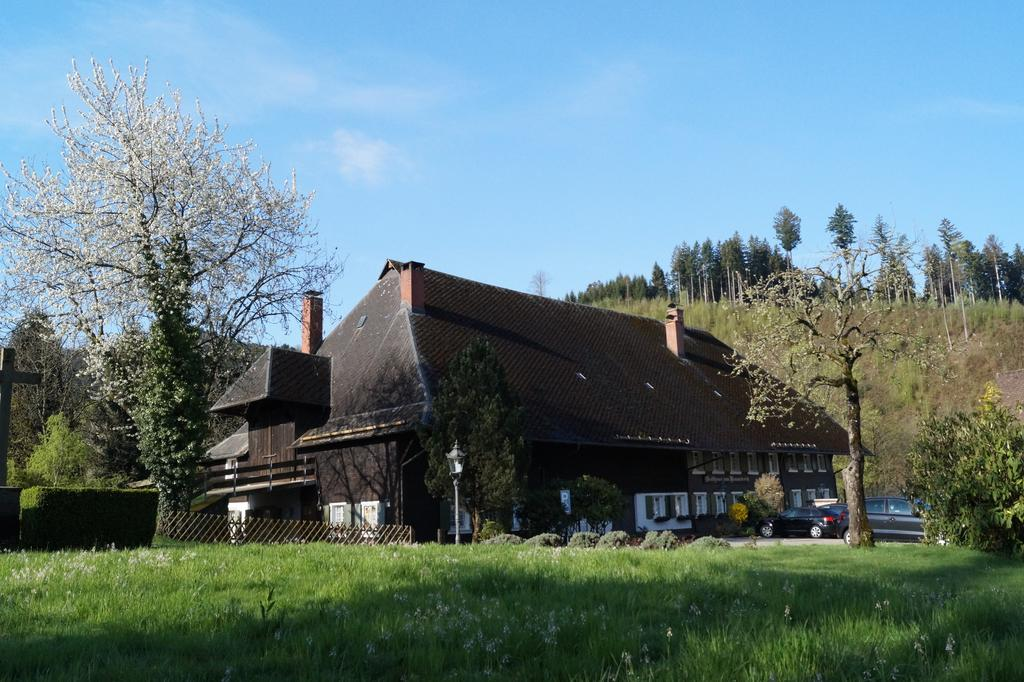 Blick über die Wiese auf das Hofgut Himmelreich. Das Hofgut ist ein altehrwürdiges Gebäude mit großem überhängendem Dach.