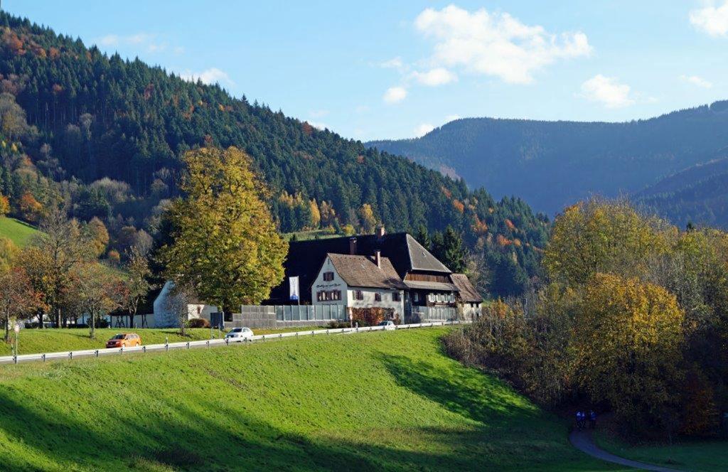 Sommerlicher Blick auf das Hofgut. Im Vordergrund eine Wiese, im Hintergrund Schwarzwaldberge. Es liegt direkt an der B31, die durch das sogenannte Höllental in Richtung Donaueschingen führt.